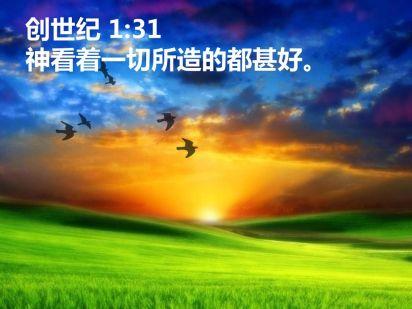 Image result for 创1:31